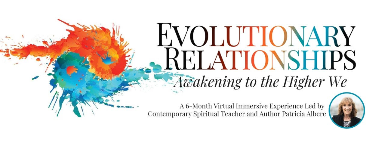 Evolutionary Relationships Course banner